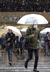 11月としては54年ぶりの降雪を記録した東京都内