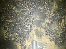 福島第一2号機格納容器調査170209