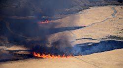 坊ガツル湿原で行われた野焼きの様子