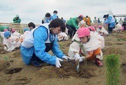 植樹イベントの模様。防災林再生に向け園児など地域住民も参加した