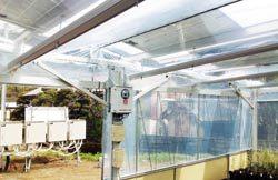 ソーラーシェアリングでの野菜栽培を自動化する実証設備
