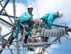 送電線復旧作業に取り組む参加者