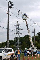 工務・配電部門合同による非常災害復旧訓練では相互に作業を視察して理解を深めあった
