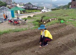 棚田だった土地を活用した高取第1農園。余裕を持った区画スペースとなっている