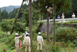 熟練社員「技術マスター」の指導を受けながら行った倒木の伐採訓練
