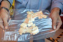 苓北発電所で使用している木質チップ。福岡県から引き取った丸太は発電所内でチップ化する