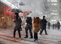 降雪などで交通網などが混乱した東京都心。この日、都心では23cmの降雪があった。(22日、東京都千代田区)