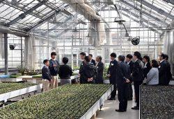アグリセンター内でチャレンジドから園芸業務の説明を受ける見学者