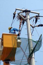 電柱上に作られたカラスの巣を撤去する作業