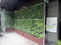 広島市内に設置された壁面緑化システム