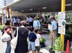 アグリセンターで栽培する野菜や花の苗も販売した