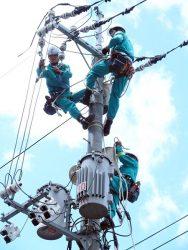 電柱に直接昇り復旧作業を行う中国電力社員