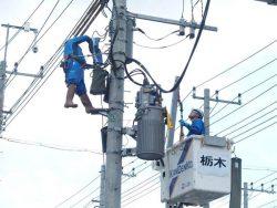 架空配電部門では無停電工法による柱上変圧器の取り換え作業を行った