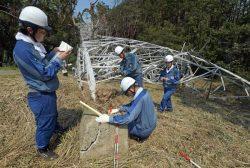 倒れた鉄塔の基礎部分を調査する東電PG社員(10日、千葉県市原市)